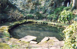 Peaceful holy well