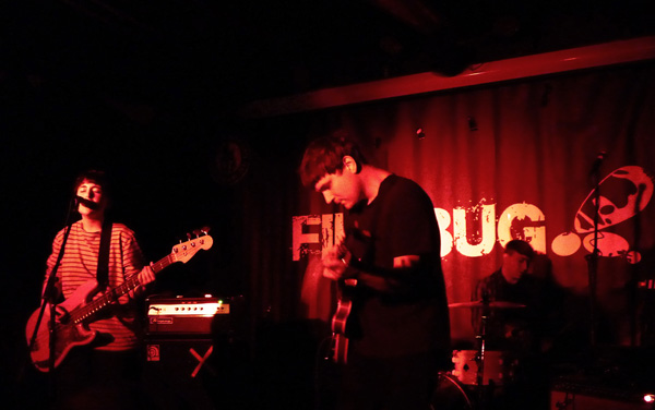 Flowers at Firebug - 9th April 2016. Photo: Keith Jobey.
