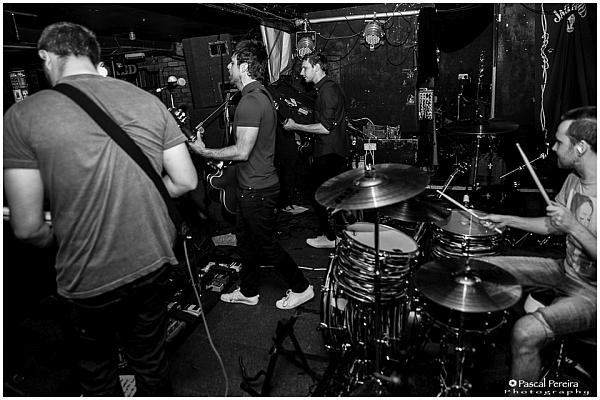 Albany at The Shed, 19th July 2016. Photo: Pascal Pereira.