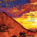 Tindersticks – Falling Down A Mountain