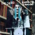 The Cribs – Ignore The Ignorant