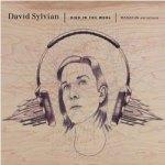 David Sylvian – Died In The Wool: Manafon Variations