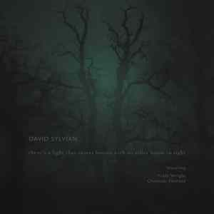 David Sylvian - There's A Light That Enters Houses With No Other House In Sight