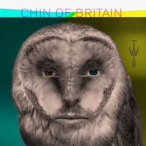 Chin Of Britain - The Weasel Is At The Bridge