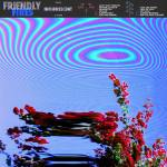 Friendly Fires – Inflorescent