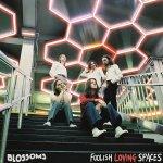 Blossoms – Foolish Loving Spaces