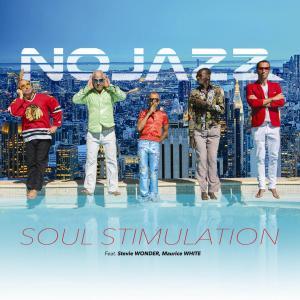 nojazz-soul-piscine-ok-pour-le-net