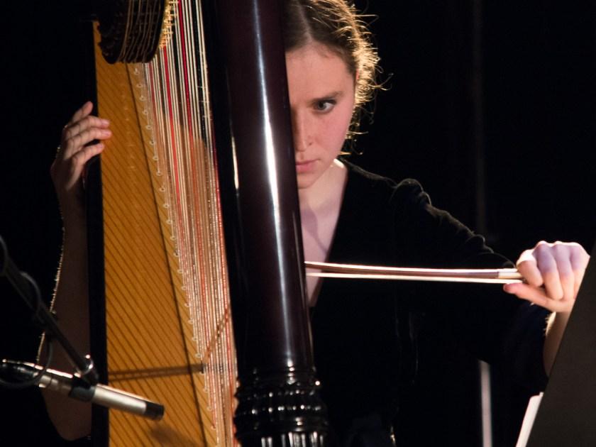 Die Harfenistin vom Ensemble Adapter. Foto: Hufner