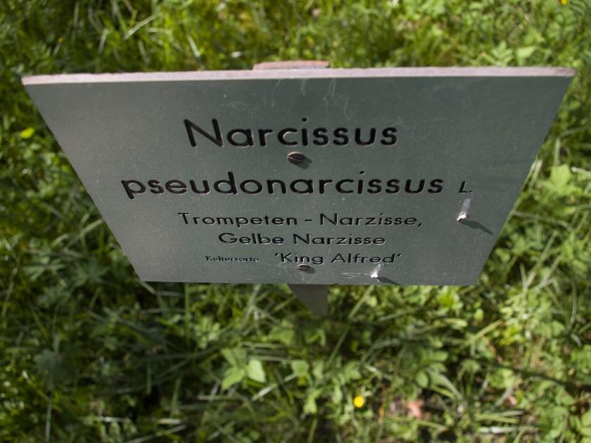 Narzisisten unter sich. Foto: Hufner