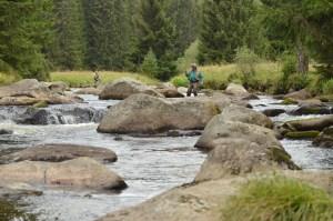 Muškaření v horské šumavské řece