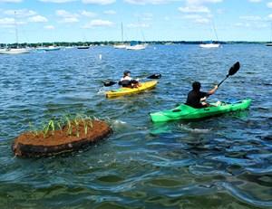 MCC students transport the Floating Treatment Wetland by kayak along the Muskegon lake shoreline.