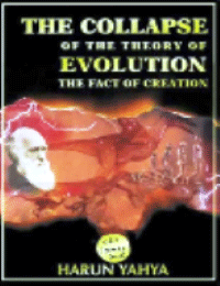 The Collapse Of The Theory Of Evolution