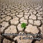 Allâh a comparé le bas-monde avec l'eau…