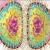 সংশয় সিরিজ-১২: মানবতার লঙ্ঘন নাকি অজ্ঞতার আস্ফালন?