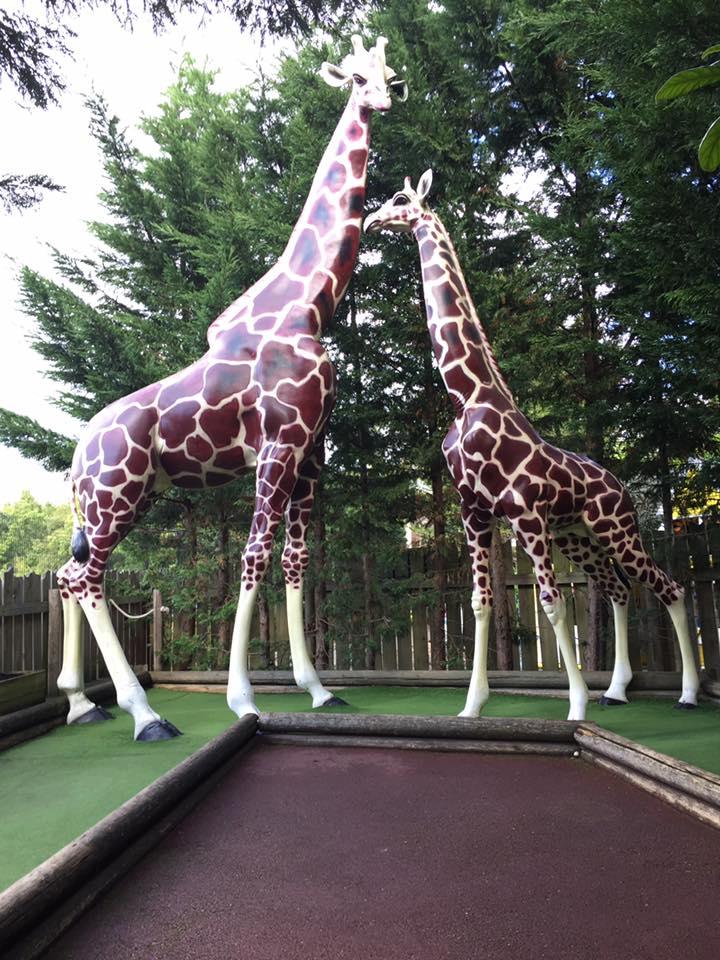 Safari golf at Paradise Wildlife Park