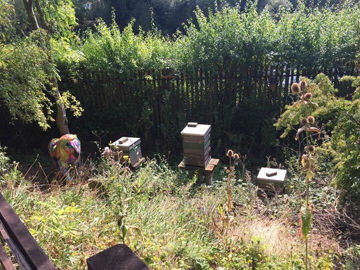 Railword Bee hives
