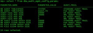 Oracle Audit Data Delete