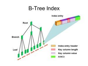Oracle Index 1