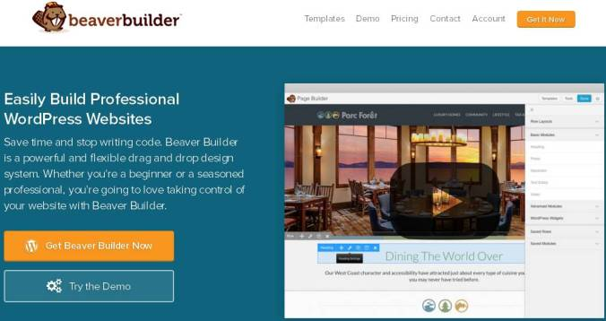 wpbeaverbuilder-the-5-best-wordpress-plugins-for-creating-landing-pages-without-coding-skills