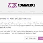 How to Start Online Store With WooCommerce in WordPress