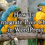 How to Integrate Tawk.to Live Chat Feature in WordPress for Free