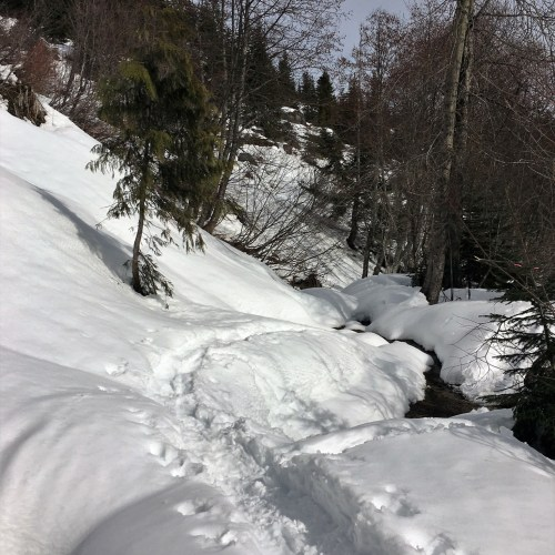 Stevens Pass WA