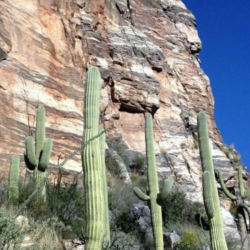Tucson Arizona AZT canyons
