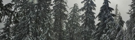 11 Things I Have Learned About Snowshoeing