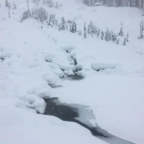 Source Lake Snowshoe WA