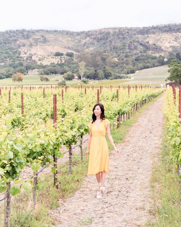 Sonoma Vineyard Scribe Winery