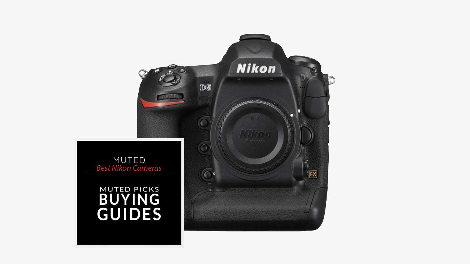 Best Nikon Cameras For Every Budget