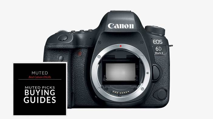 Best Canon DSLRs For Every Budget