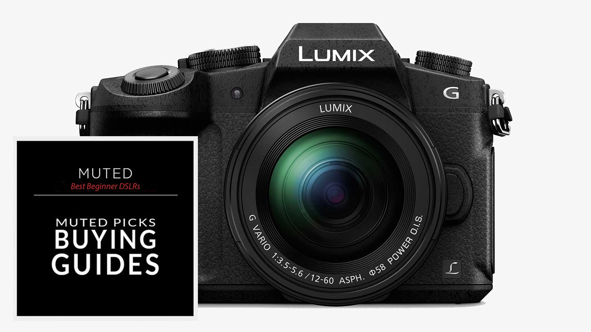 Best Entry Level DSLRs for Beginners
