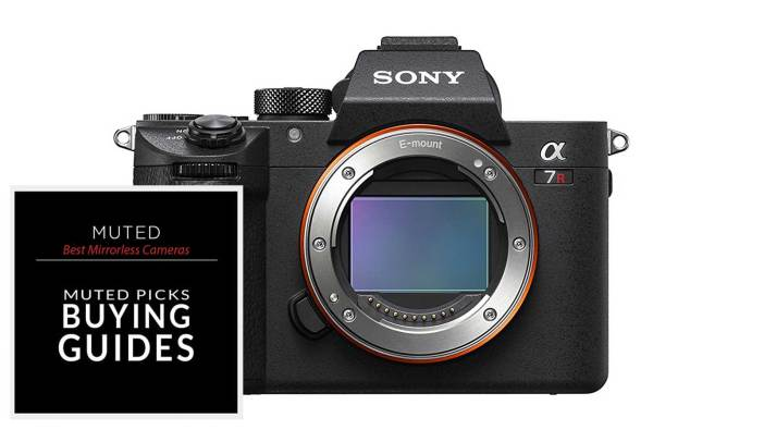 The Best Mirrorless Camera for any Budget