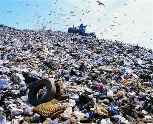 Mutiny composting & recycling scheme!