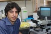 Bir Çeşit Oruç Perhizi Diyabetli Pankreası (Tip1 Diyabet) İyileştiriyor