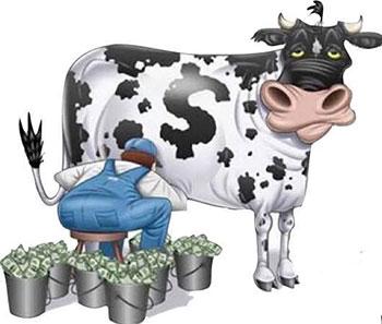 Gıda alerjisi inek sütü