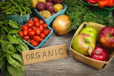 Organik Tercih Etmeniz Gereken ve Gerekmeyen Gıdalar