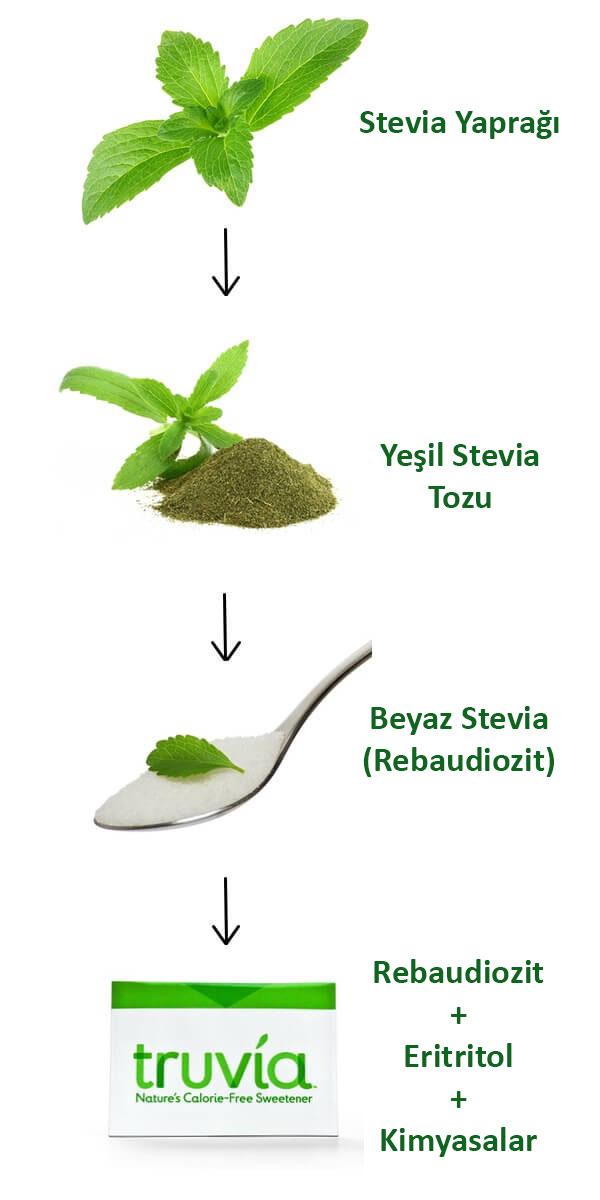 Stevia Bitkisi işlenme süreçleri