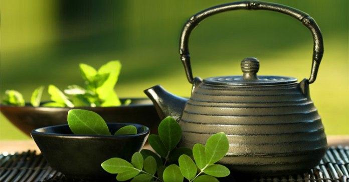 Moringa Çayı çaydanlıkta ve moringa yaprakları