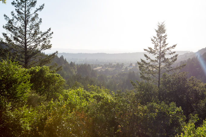 Northern California view of hosts' promontory