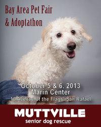 Bay Area Pet Fair and Adopt-a-thon