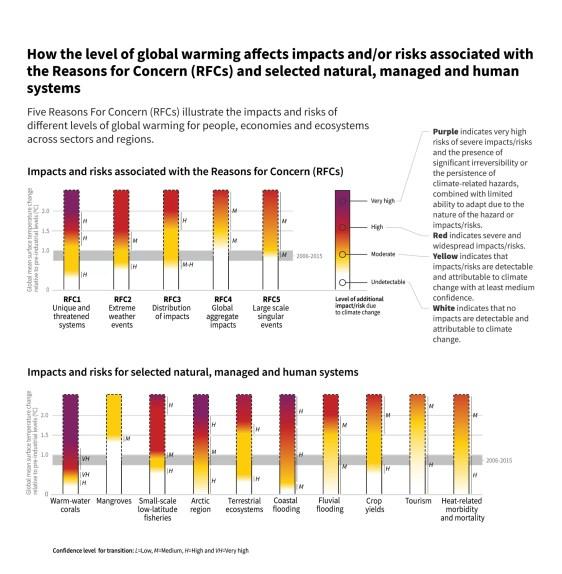 Impatto del riscaldamento globale sull'ecosistema - Migliorare le abitudini di mobilità - Muv Game