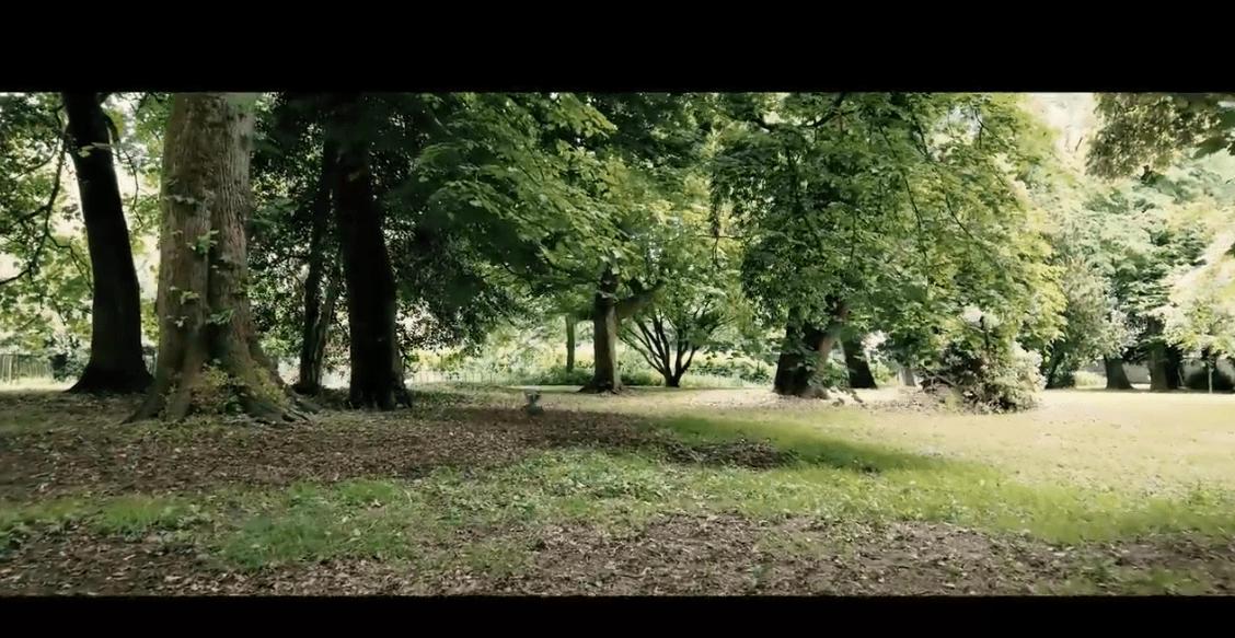 muxetv rok pat Bute & Roath Parks