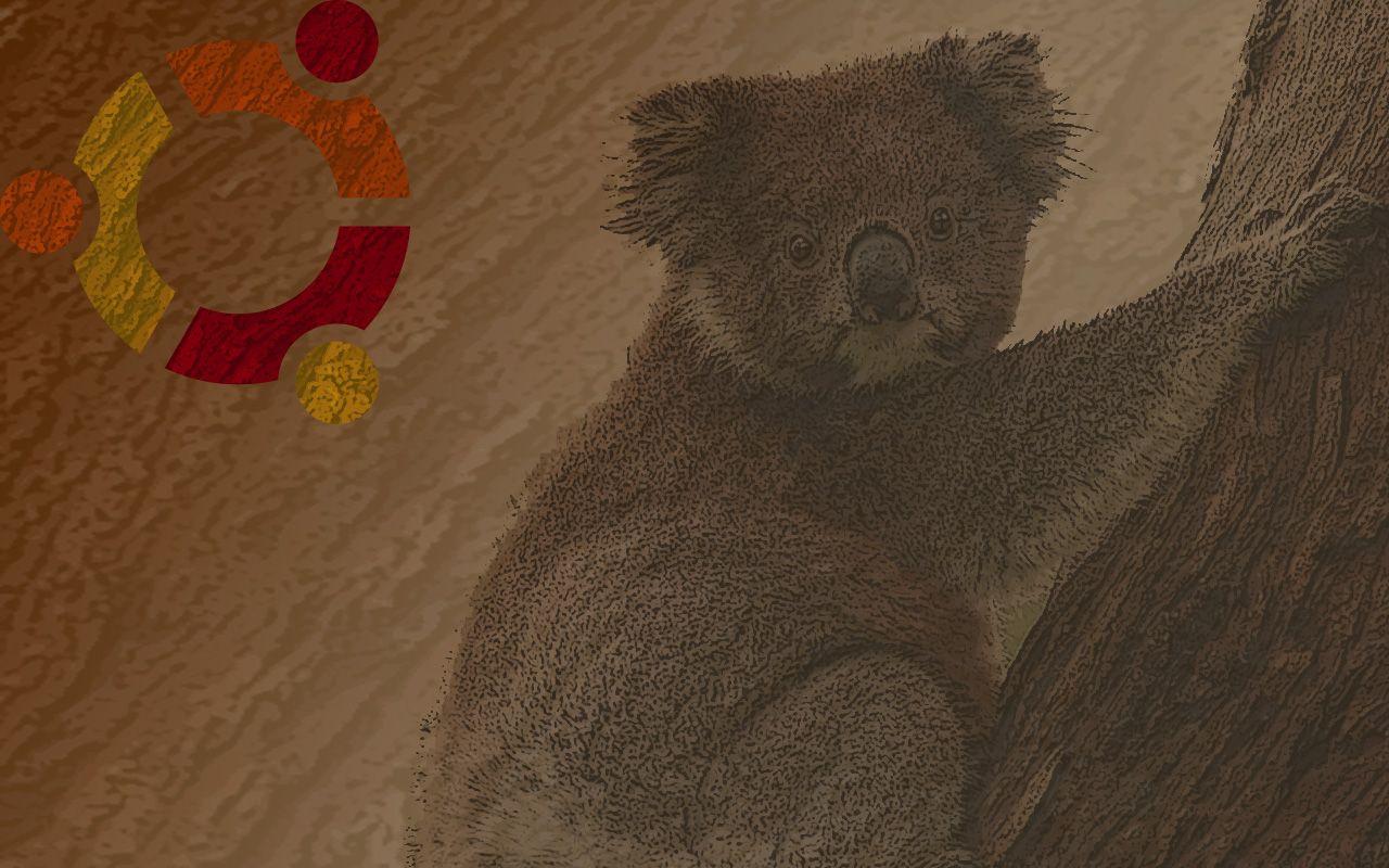 samohtm_koala_bark