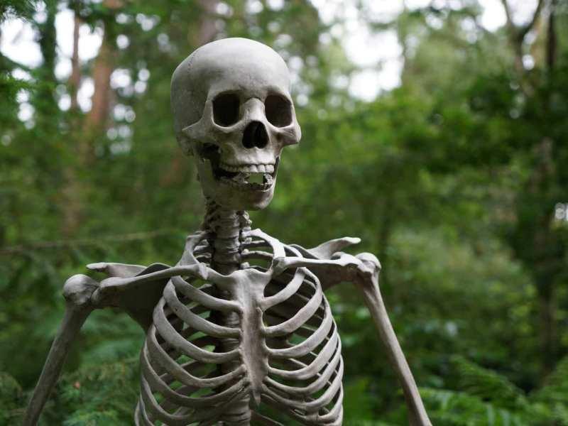 Human Skeletons Found Near Muzaffarpur SKMCH Hospital