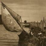 Canal în Delta Dunării