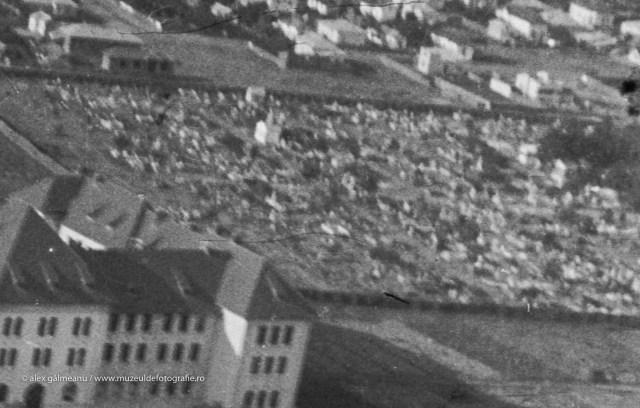 Detaliu - Cimitirul Dumbrava