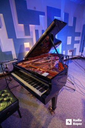 dvojina-jazz-v-hendrixu-7-6-2017-foto-alan-radin (2)