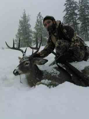 Snowey Whitetail